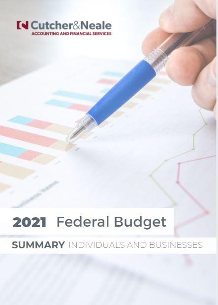 2021 Budget Summary SME Individuals