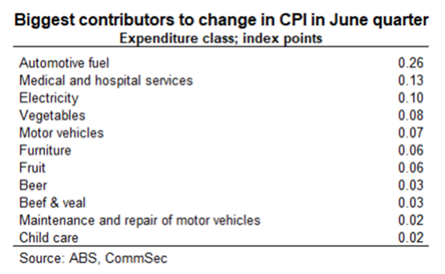 Biggest contributors to change in CPI in June quarter